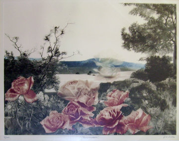 Rosecape Limited Edition Print by G.H Rothe