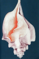 Mollusk 1976 Limited Edition Print by G.H Rothe - 0