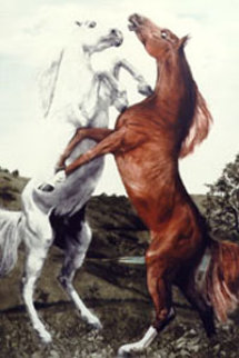 Powerplay 1985 Limited Edition Print by G.H Rothe