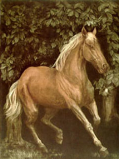 Thoroughbred Running Limited Edition Print by G.H Rothe