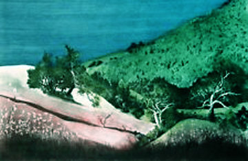 Big Creek I 1985 Limited Edition Print by G.H Rothe
