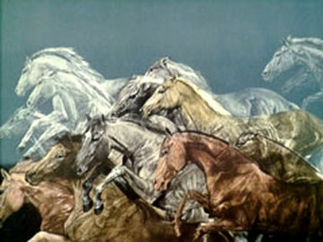 Chase AP 1981 Limited Edition Print by G.H Rothe