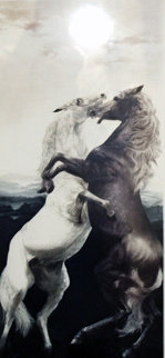 Joy 1978 Limited Edition Print by G.H Rothe