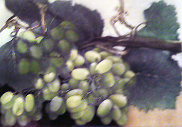 Grapes with Pastel 1998 Limited Edition Print by G.H Rothe