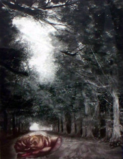 Solitude AP Limited Edition Print by G.H Rothe