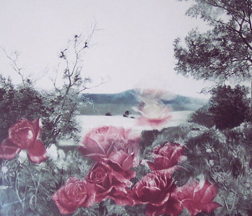 Rosescape Limited Edition Print - G.H Rothe