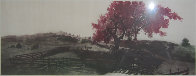 Coral Corral 1978 Limited Edition Print by G.H Rothe - 1