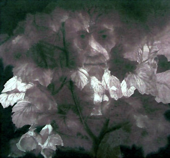 Mindscape 1977 Limited Edition Print - G.H Rothe