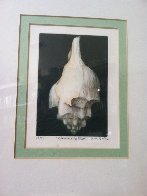 Left Winding Shell 1975 Limited Edition Print by G.H Rothe - 1