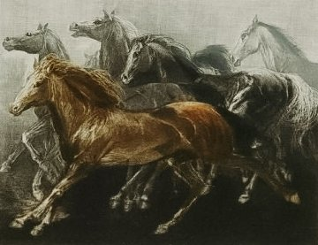 Endurance 1970 Limited Edition Print by G.H Rothe