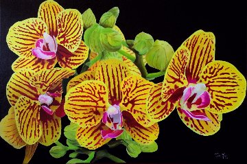 Orchids 2017 24x36 Original Painting - Ruben Ruiz