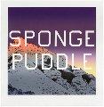 Sponge Puddle 2015 Limited Edition Print - Edward Ruscha