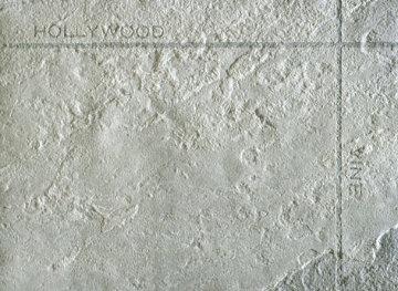 Petro Plots: Hollywood/Vine, 2001 Limited Edition Print - Edward Ruscha