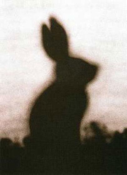 Rabbit #142 Limited Edition Print by Edward Ruscha