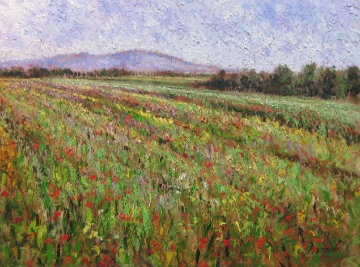 Field of Flowers 2001 36x44 Super Huge Original Painting - Samir Sammoun