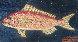 Key West Yellowtail 1986 8x15 Original Painting by Mario Sanchez - 0