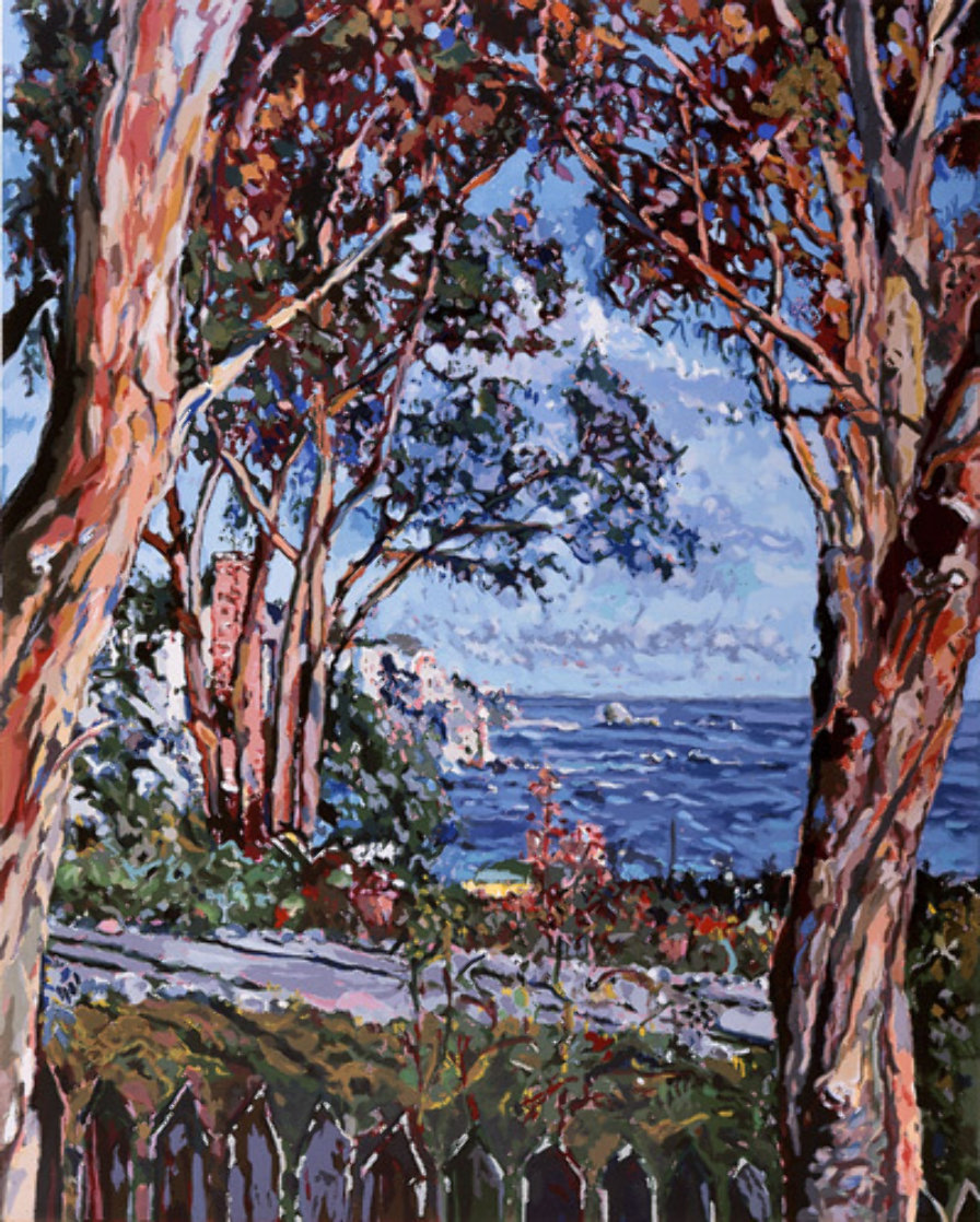Moss Point California AP 1979 Limited Edition Print by Marco Sassone
