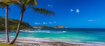 Tropical Bliss  Panorama by Rick Scalf