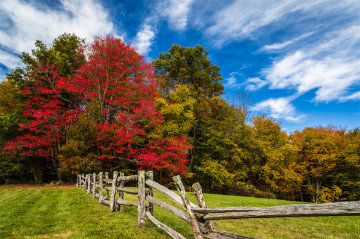 Happenstance Panorama by Rick Scalf