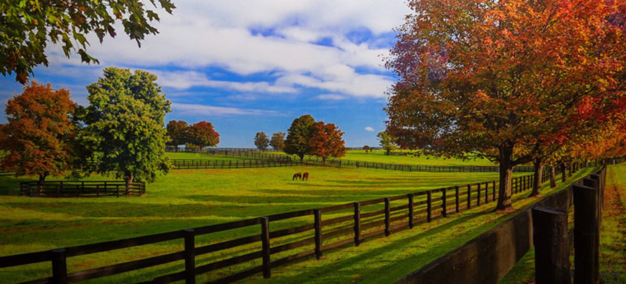 Chasing a Dream  Panorama by Rick Scalf