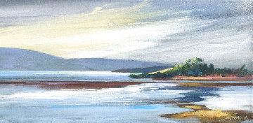 Tom's Inlet 2018 18x37 Original Painting - Tim Schaible