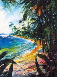 Mai Tai Cove 33x28 Original Painting - Michael Schofield