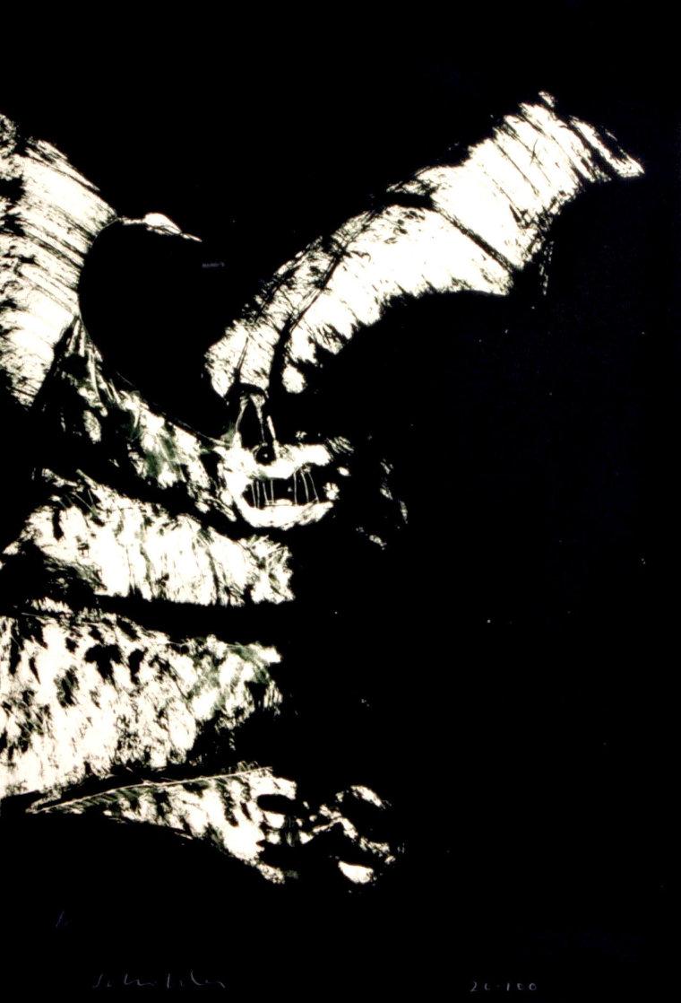 Anpao/BAT 1977 Limited Edition Print by Fritz Scholder