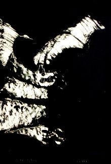 Anpao/Bat 1977 Limited Edition Print - Fritz Scholder
