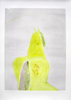 Dream Horse Series, #5 Monotype 1986 29x20 Works on Paper (not prints) - Fritz Scholder