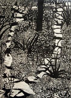 Schooley's Garden Limited Edition Print - Elmer Schooley