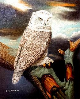 Untitled Owl Painting 1970 32x28 Original Painting - Bert Seabourn