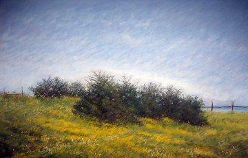 #613 Coast Road Pastel 2007 33x41 Original Painting by Eileen Serwer