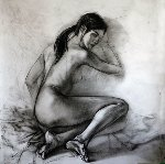 Nude And Fabric Drawing 38x38 Drawing - Alexander Sheversky