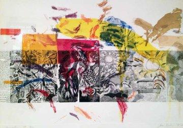 Resurrection    IX/X Original Painting - Joan Snyder