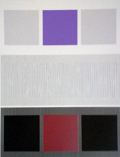 Untitled Serigraph Limited Edition Print - Jesus Rafael Soto