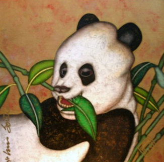 Charisma B. Panda 39x39 Original Painting - Luis Sottil