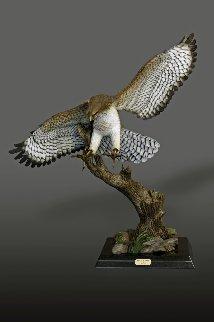 Red-Tailed Hawk Bronze Sculpture 2016 40x36 Sculpture by Barry Stein
