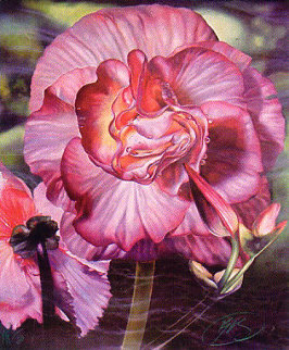 Begonia 1984 Limited Edition Print by Brett Livingstone Strong