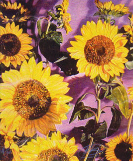 Sunflowers 1984 Limited Edition Print - Brett Livingstone Strong