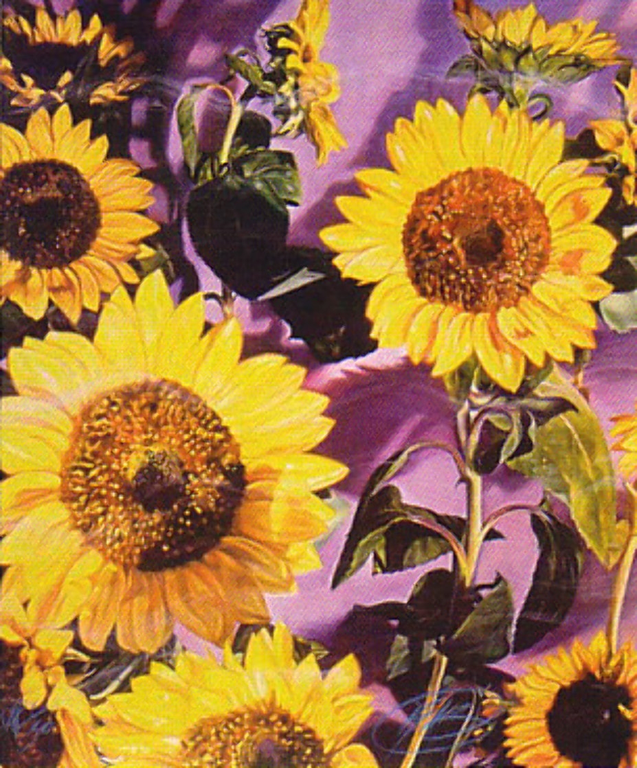 Sunflower   Limited Edition Print by Brett Livingstone Strong