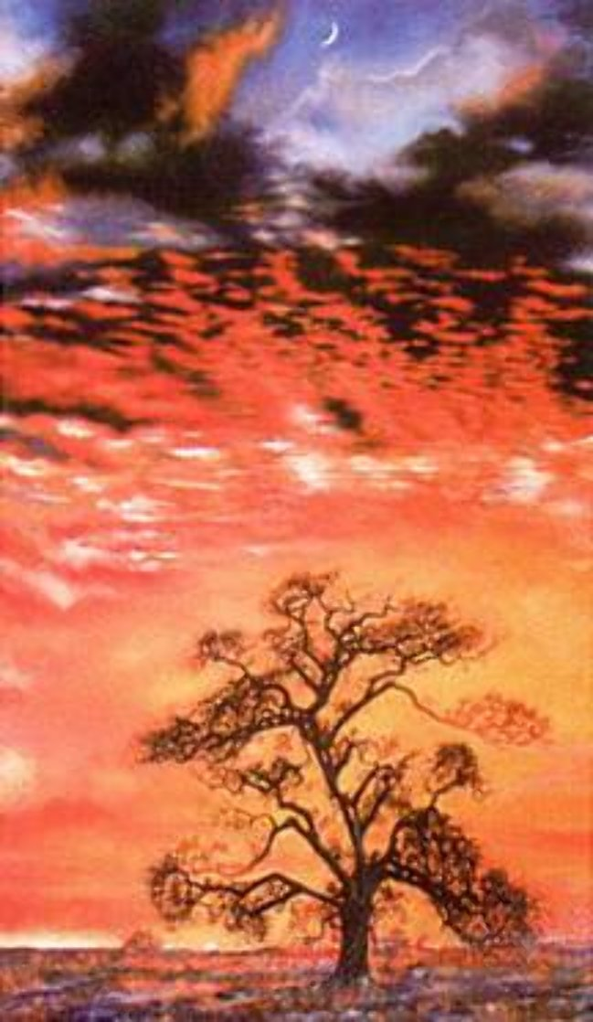 Sunset Tree Limited Edition Print by Brett Livingstone Strong