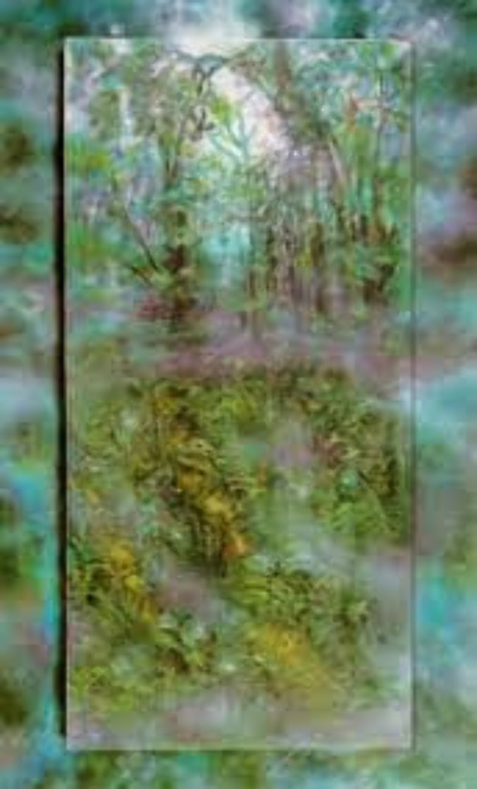 Emerald Rain Forest PP 1990 Limited Edition Print by Brett Livingstone Strong