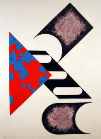 Composition 2 Limited Edition Print by Kumi Sugai - 0