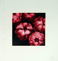 Pomegranates 1994 Limited Edition Print by Donald Sultan - 1
