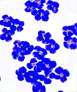 From Wall Flower Suite 2008 Limited Edition Print - Donald Sultan