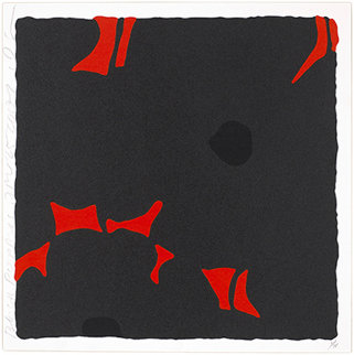 Black Poppies, April 25, 2007 Limited Edition Print - Donald Sultan