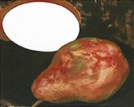 2 Pears, a Lemon, and a Egg 1994 Limited Edition Print by Donald Sultan - 0