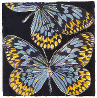 Butterflies - Monarch 2006 Limited Edition Print by Donald Sultan - 0