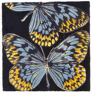 Butterflies - Monarch 2006 Limited Edition Print by Donald Sultan