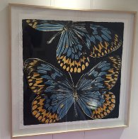 Butterflies - Monarch 2006 Limited Edition Print by Donald Sultan - 1